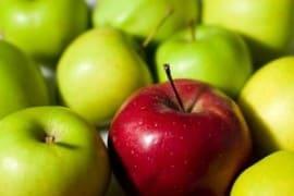 Блюда из яблок - фото