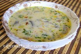 Сырный суп с шампиньонами на курином бульоне